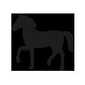 0705_Horse