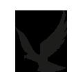 0707_Eagle