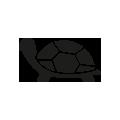 0709_Turtle